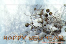 Neujahrskarte, Schnee, Text: HAPPY NEW YEAR