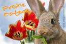 Ostergrußkarte, Hase, Himmel, Tulpen, Text: Frohe Ostern